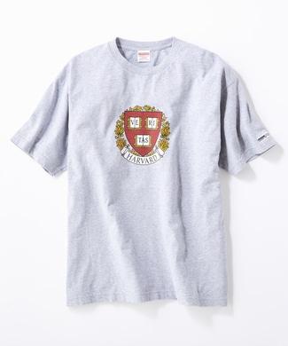 HARVARD ロゴTシャツ メンズ グレー