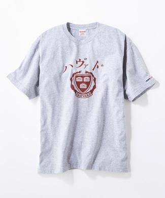 HARVARD ハヴァドロゴTシャツ メンズ グレー