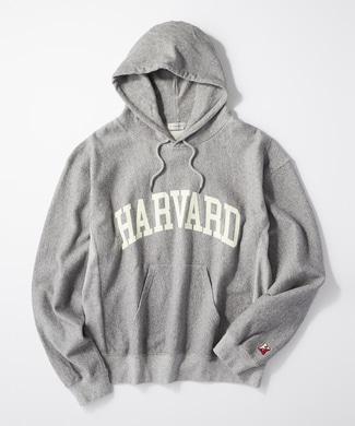 HARVARD カレッジロゴパーカー メンズ グレー
